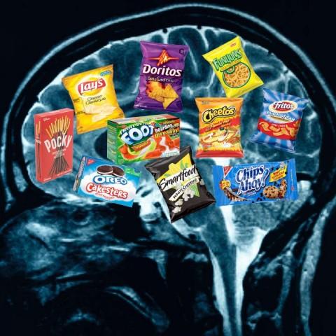 مواد غذایی برای مغز